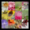 Year at a Glance – 2015 Floral Calendar