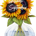 Hello September 2017!